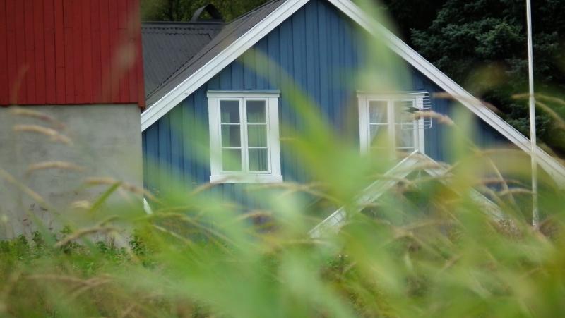 Norge i rødt, hvitt og blått! Og noe grønt!