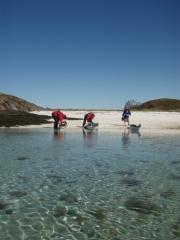 Dypingen i Karlsøyvær