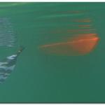 Undervannsbilde fra Lofoten