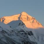 Randi Everest